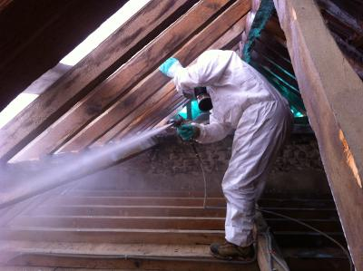 Handy Germain - Traitement Termites - Pays Basque - Landes - 35
