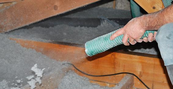 Handy Germain - Traitement Termites - Pays Basque - Landes - Soufflage de ouate de cellulose
