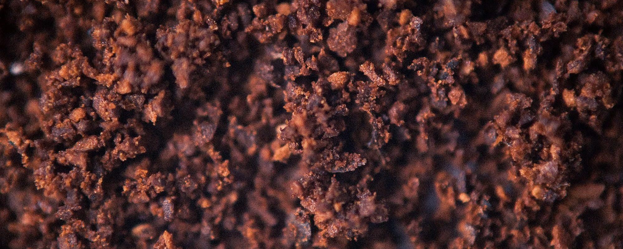 Handy Germain - Traitement Termites - Pays Basque - Landes - Par Klim Sergeev