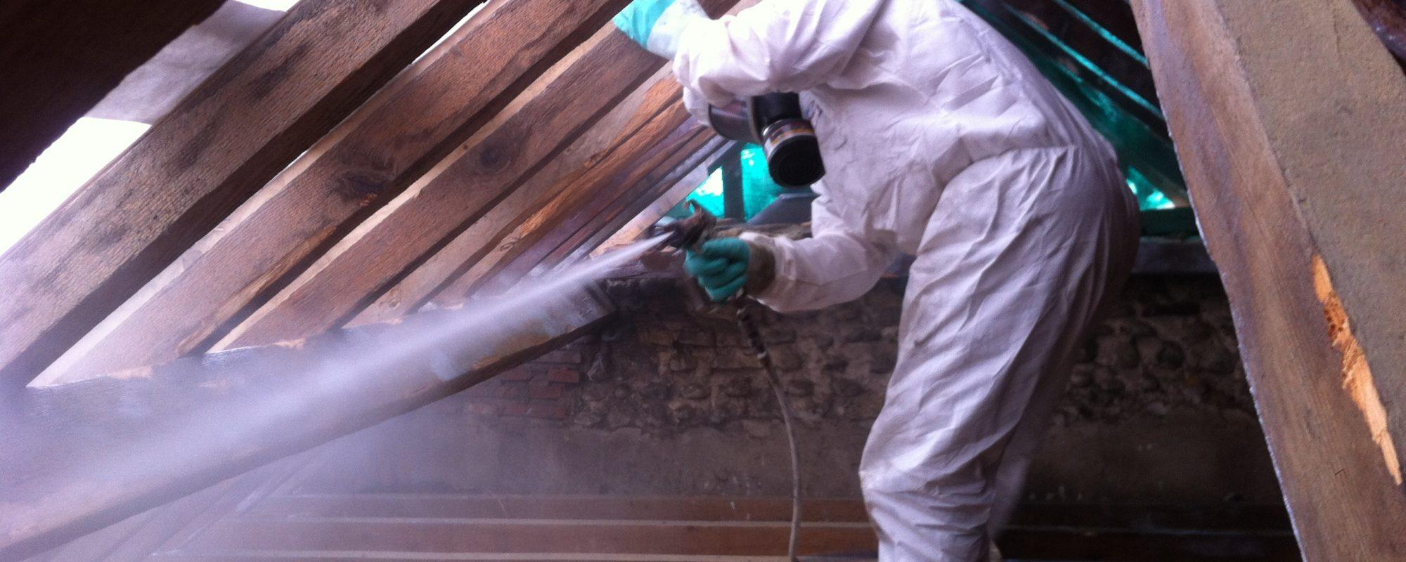 Photographie - Traitement de charpente - Handy Germain - Traitement Termites - Pays Basque - Landes